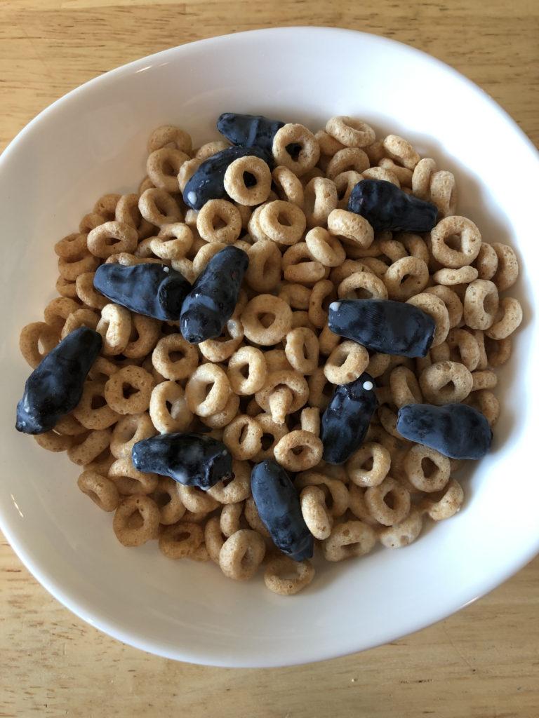 Haskap berries on Cherrios